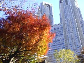 新宿と冬の空