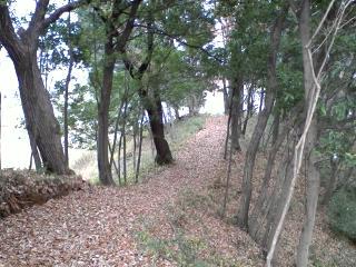 よこやまの道への登り口