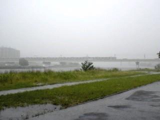雨の多摩川オフ