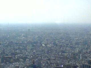 都庁展望台