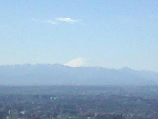 富士山を見ながら昼食