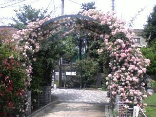 代々木ポニー公園・参宮橋公園