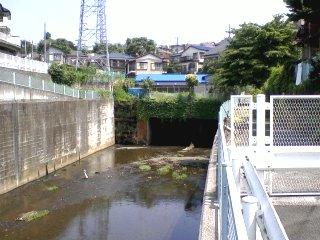 平瀬川・多摩川オフ