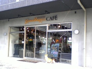 evoldog cafe