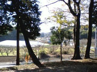 晩秋の汁守神社