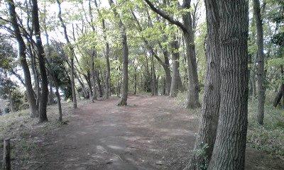 鶴川まで歩いて