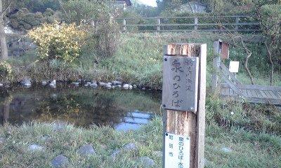 4/19朝練 鶴見川源流