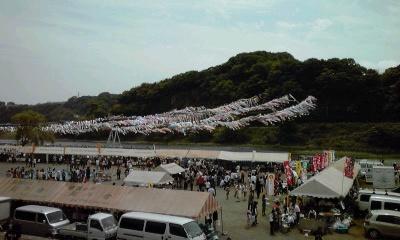 鯉のぼり・大凧