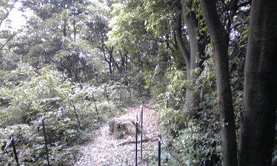 城山公園を登山